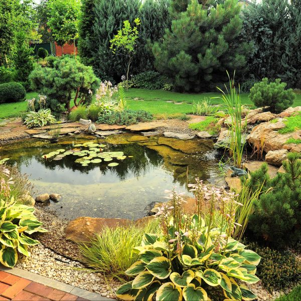 Designing Ideas for Small Yard Landscaping